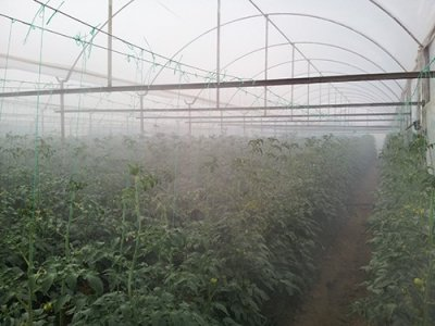 Набор для полива туманом